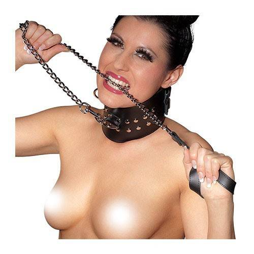 Metal Leash with Leather Grip